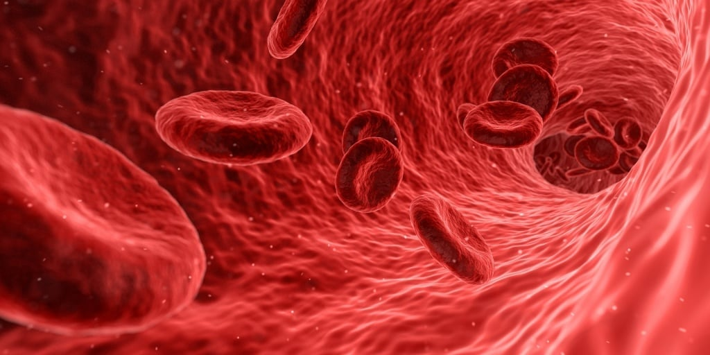 Zdrowie: Co wiemy o nowotworach krwi?