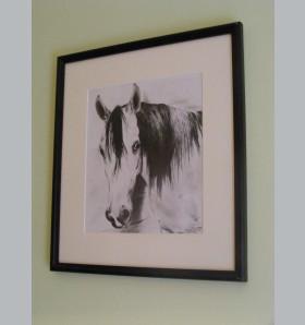 """""""Rysowanie i bilard to moje hobby, konie to moja miłość"""""""