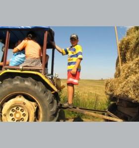 Niebezpieczne maszyny i bezmyślność ludzka, czyli wypadki podczas pracy w rolnictwie