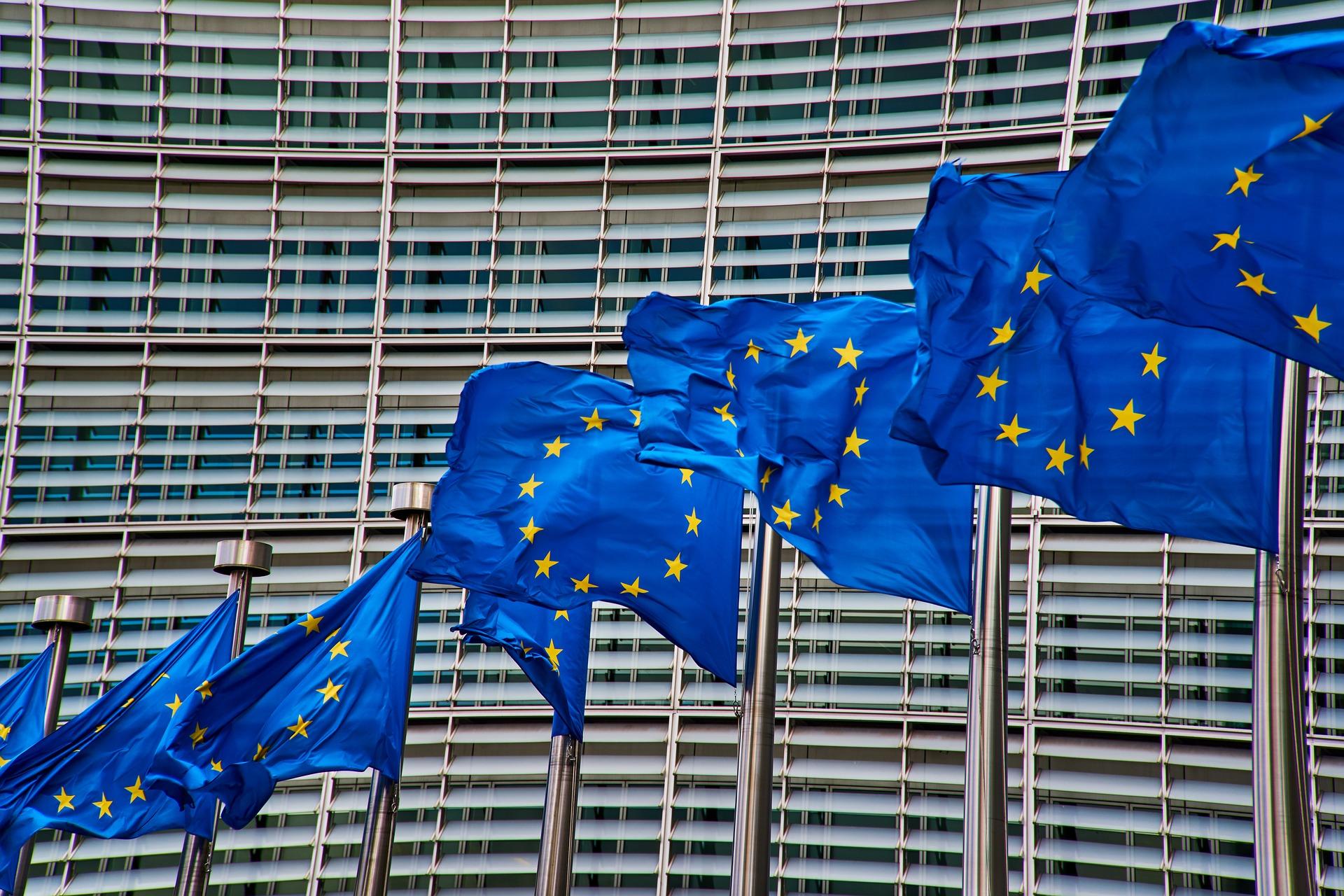 Wybory do Parlamentu Europejskiego - informacje dla niepełnosprawnych