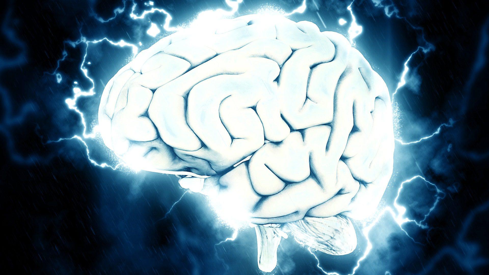 Polacy badają aktywność mózgu. Opracują skuteczną metodę nauki języków obcych?