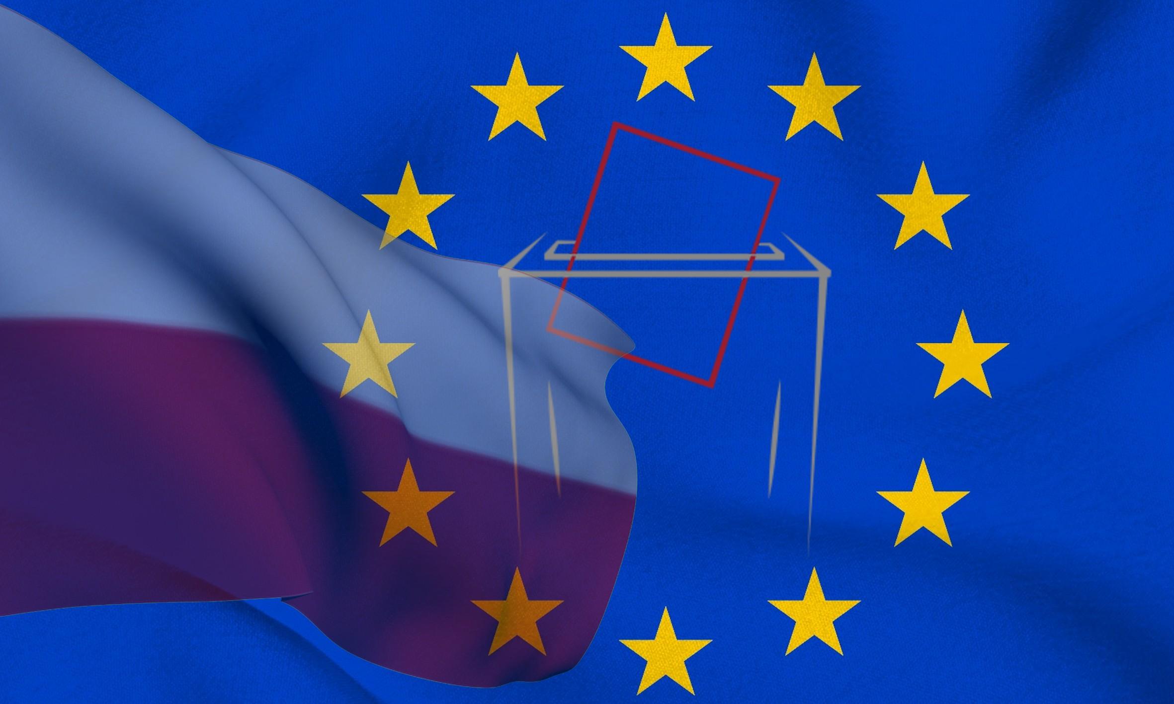 Wybory do PE: Ważne terminy dla osób z niepełnosprawnościami