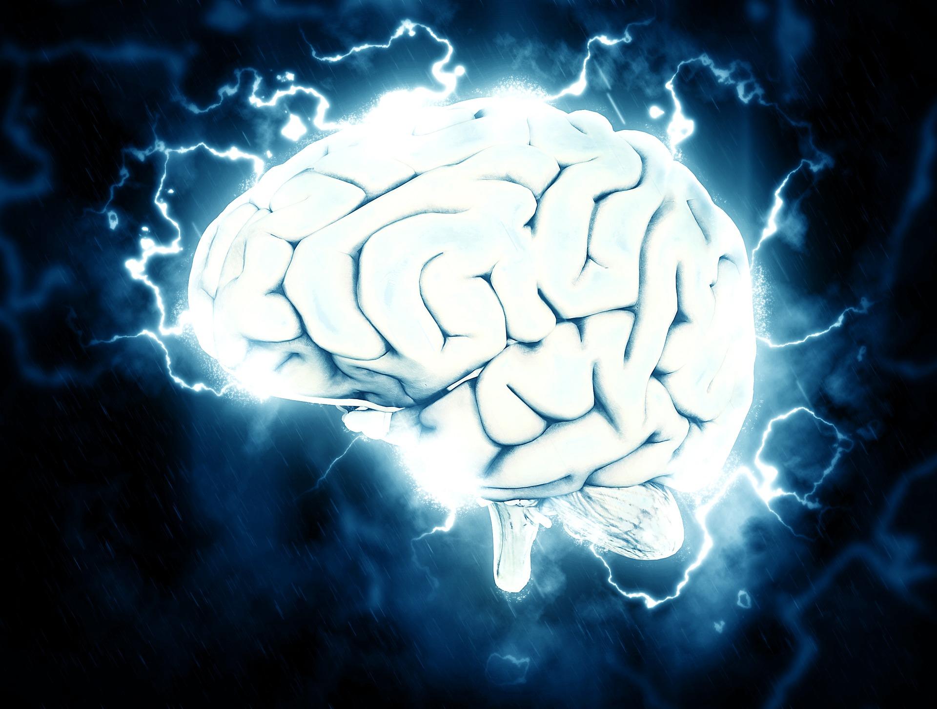 Badaczka mózgu: Wiele problemów psychicznych wynika z braku zrozumienia, jak działają nasze umysły