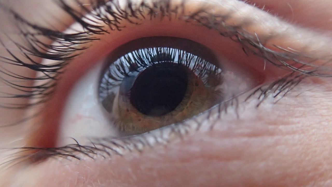 GIS wycofuje krople do oczu