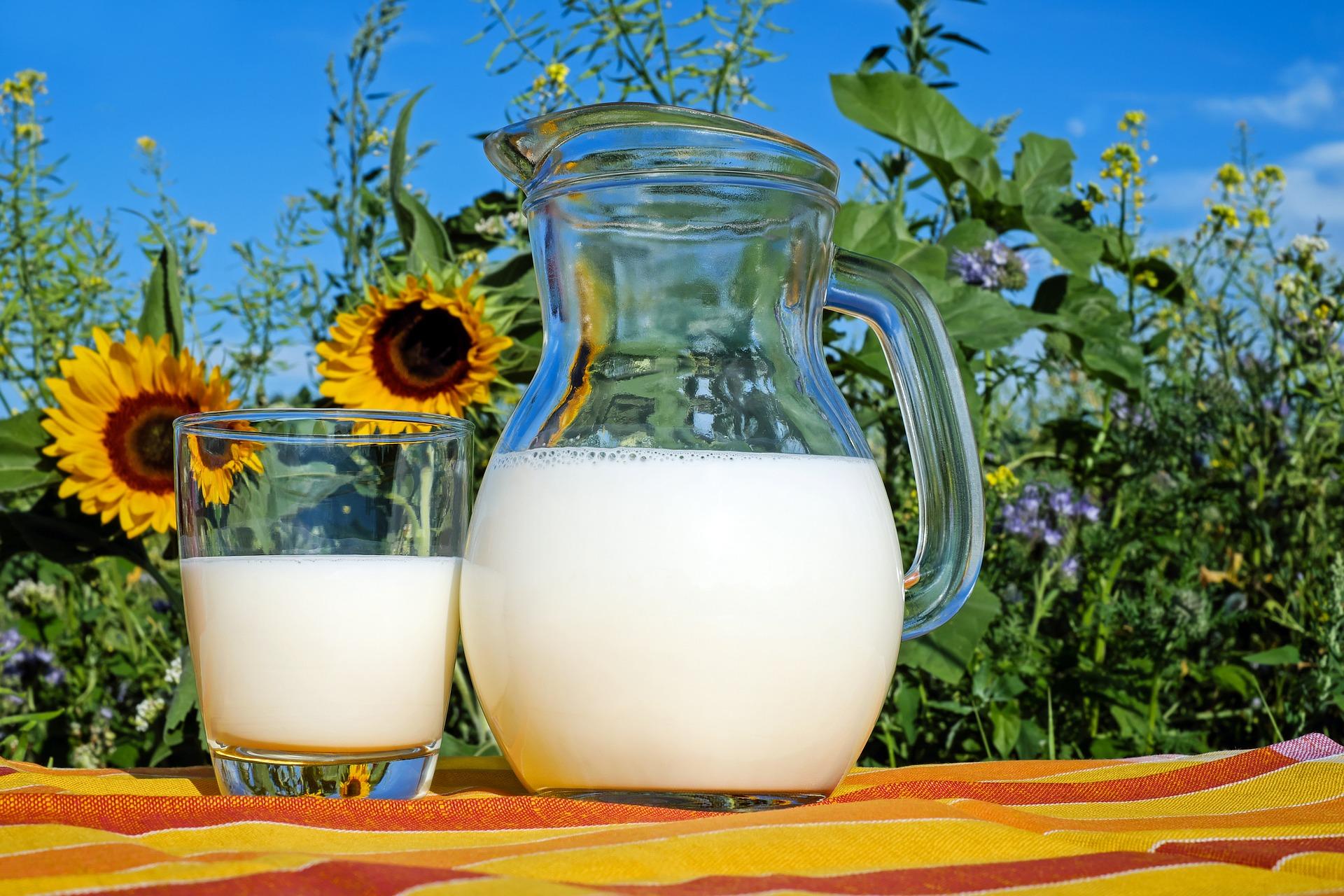 Eksperci: alergia na białko mleka krowiego to poważna choroba