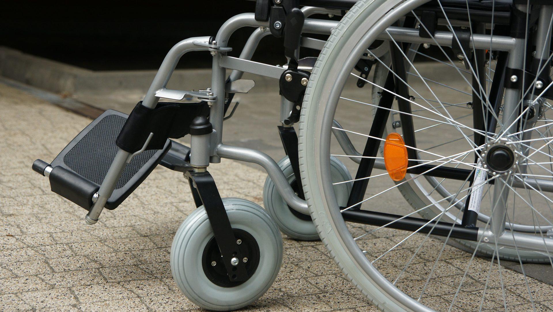 Niepełnosprawność jako element bioróżnorodności w społeczeństwie i kulturze
