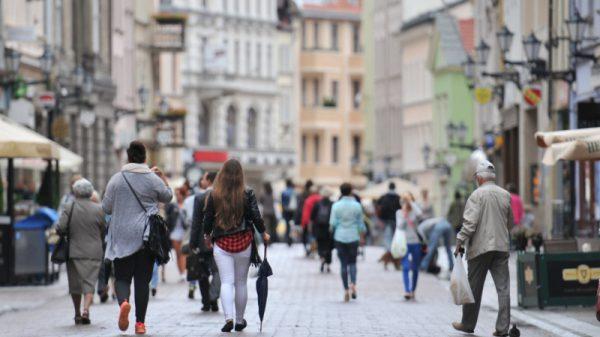 Toruń: Spotkanie dla wolontariuszy