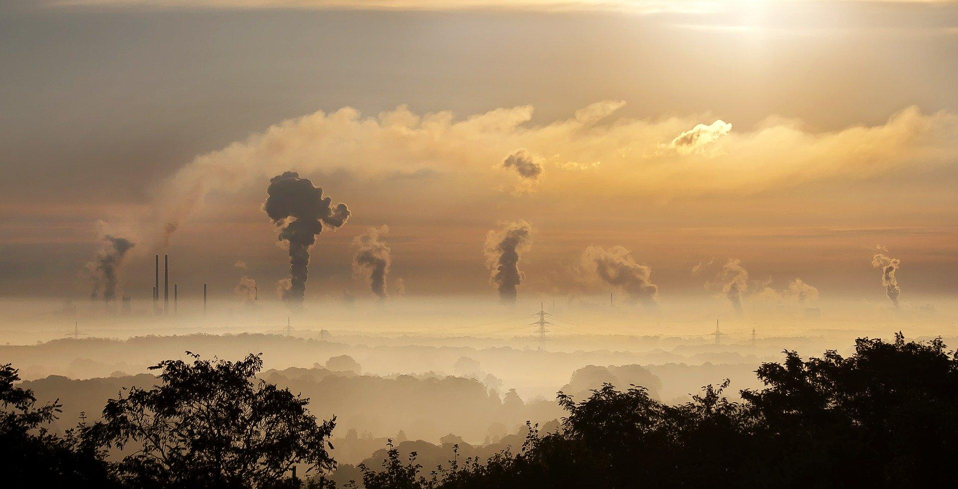Polacy wciąż niewiele wiedzą o stanie środowiska