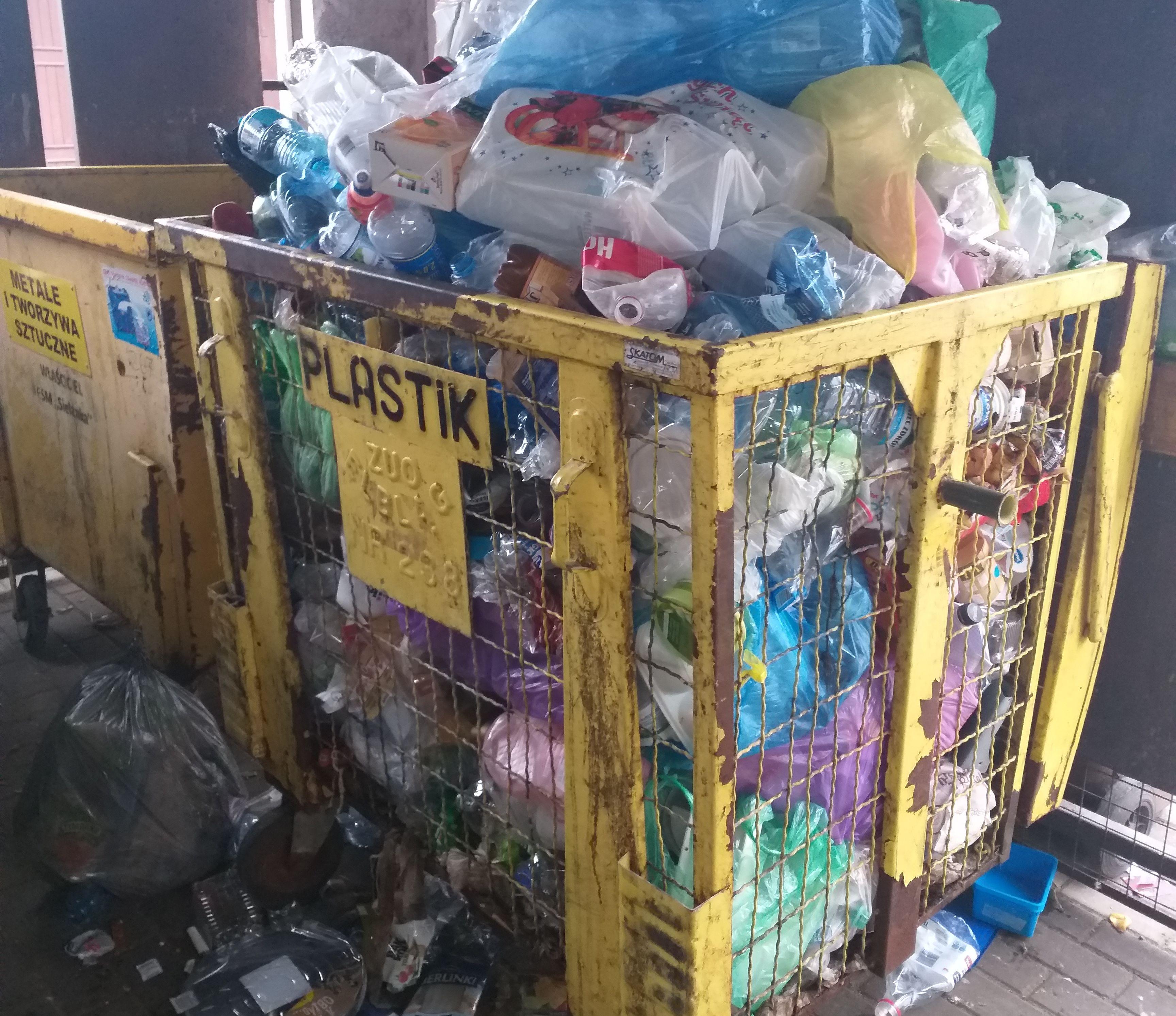 Wyszukiwarka podpowie jak segregować śmieci