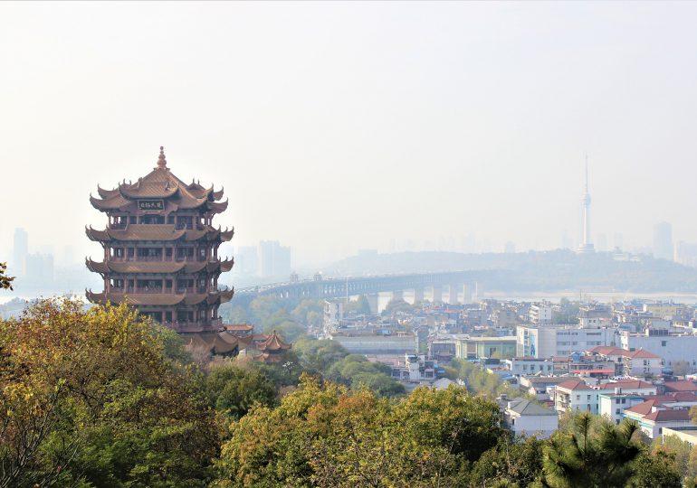 Eksperci WHO w Wuhanie: Nie jest jasne, jakie zwierzęta mogły być nosicielem pośrednim koronawirusa