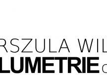 """""""Blumetrie cd."""" Urszuli Wilk – nowa wystawa w Galerii EL"""
