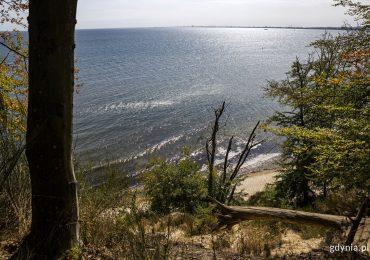Gdynia: Wybija godzina dla Bałtyku