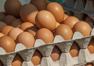 70 proc. Polaków woli kupować jaja z wolnego wybiegu
