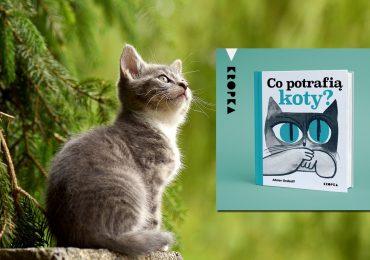 """Warto przeczytać: """"Co potrafią koty?"""""""