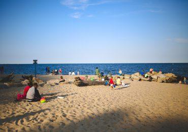 Gdynia: Sinice w wodach zatoki. To musisz o nich wiedzieć