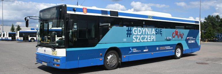 Gdynia: Nowy rozkład jazdy gdyńskiego Szczepibusa