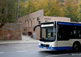 Gdynia: Co nowego Dzień Wszystkich Świętych – sprawdź dojazd do cmentarzy